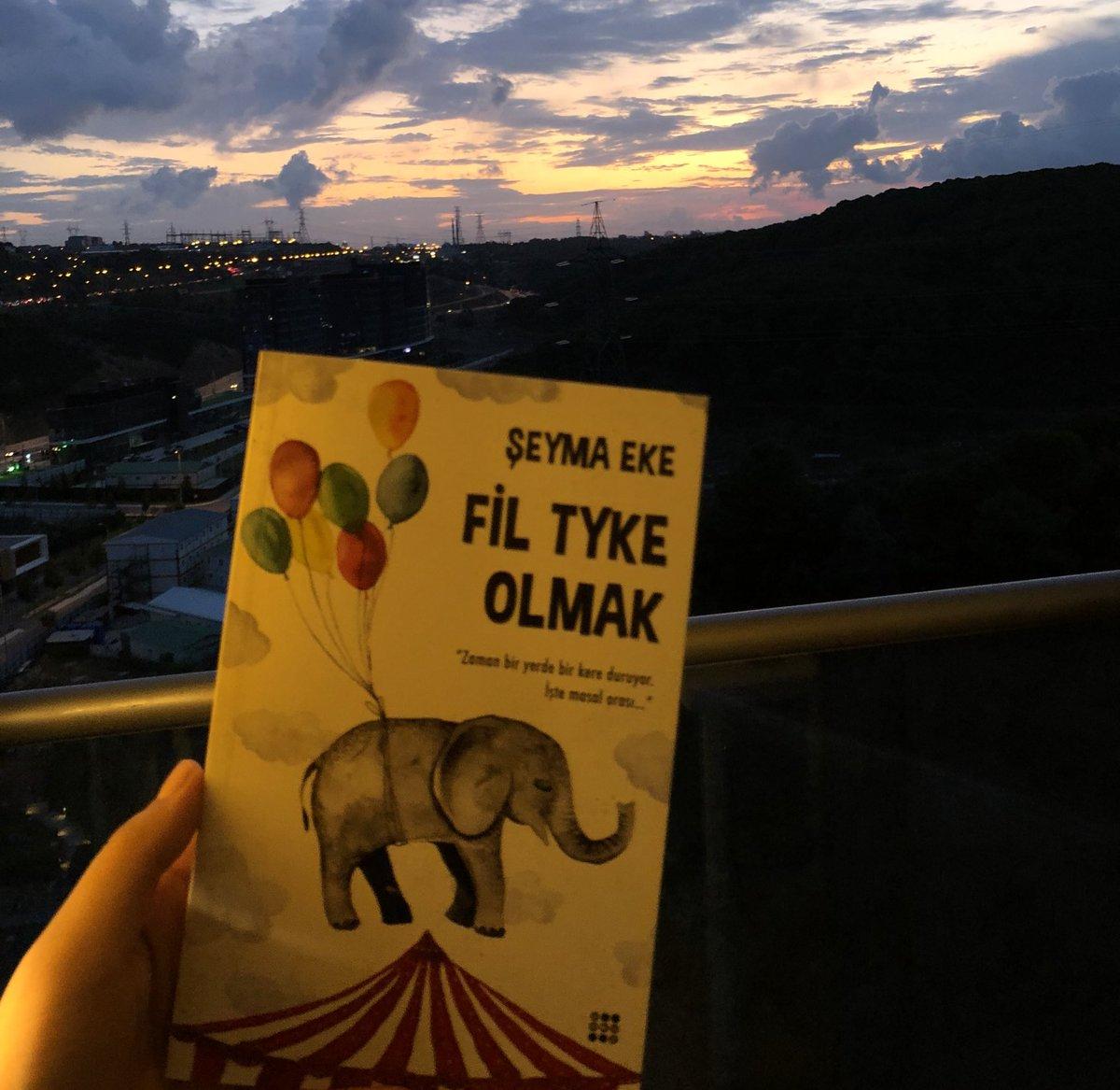 """""""Sonunu bildiğin hikayelere başlamanın en güzel yanı hikayeyi değiştirebileceğin noktaları adın gibi bilmendir."""" Fil Tyke Olmak 🐘 dr.com.tr/Kitap/Fil-Tyke…"""