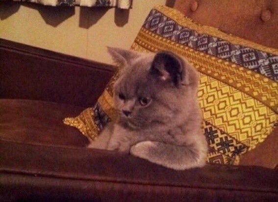 The way Taylor sings GAVE up on ME likeiwasabaddrug..there's so much desperation in her voice
