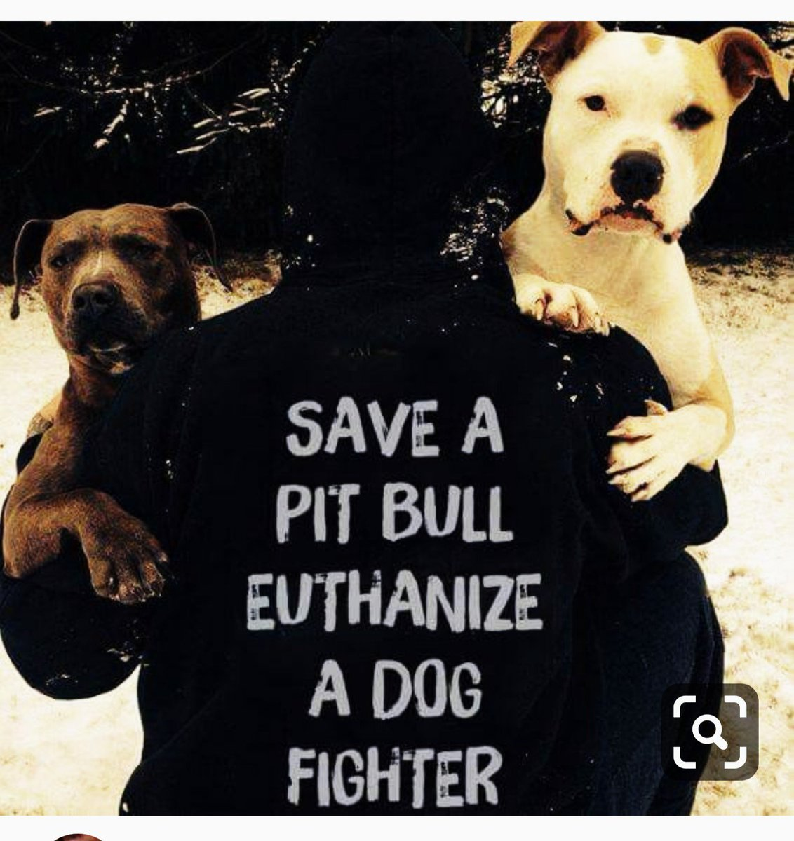 HARSH PUNISHMENT FOR DOG FIGHTERS, BACKYARD BREEDERS, ABUSE CRUELTY TORTURING RAPE ZOOPHILIA, HOMELESS OF PETS.*ALL SOCIAL MEDIA IS FULL OF THISBAN ALL PROMOTION ON SOCIAL MEDIAS  <br>http://pic.twitter.com/sj25GFZHe9
