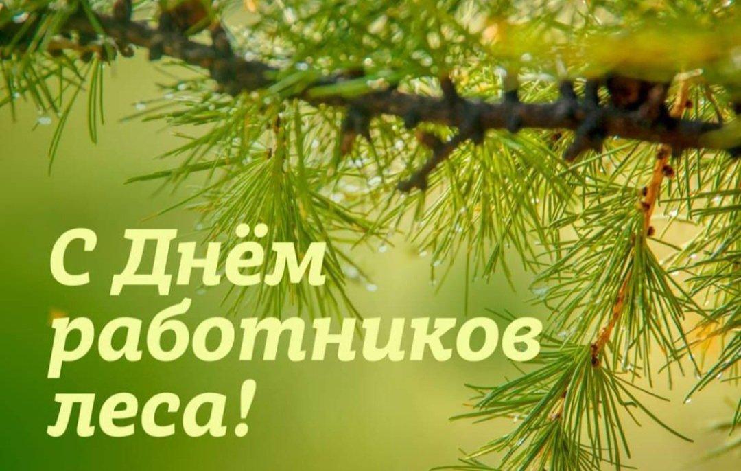 Открытки работника леса, день рождения крымско