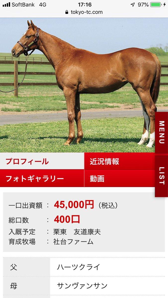 東サラでもし、入会するのなら、この馬かなぁ…??🤔🤔🤔 友道厩舎でこの価格は魅力だけど、兄弟が走ってないのが引っかかる!