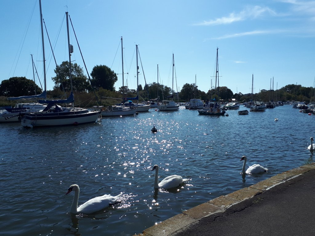 Sitting here by the river in #Christchurch, while the kids enjoy the Splash Park, savouring this last gasp of summer... @LoveXchurch <br>http://pic.twitter.com/WmSVCcAHdQ