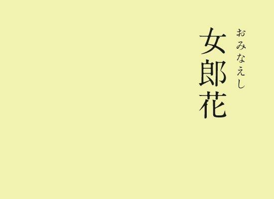 女郎花(おみなえし)|にっぽんのいろ秋の七草のひとつとして数えられるオミナエシの花の色。「女郎(いらつめ)」とは身分の高い女性や若い女性のことで、秋の野原にひっそりと佇む様子が例えられました。▼にっぽんのいろのインスタはこちら#暦生活 #日本 #伝統色