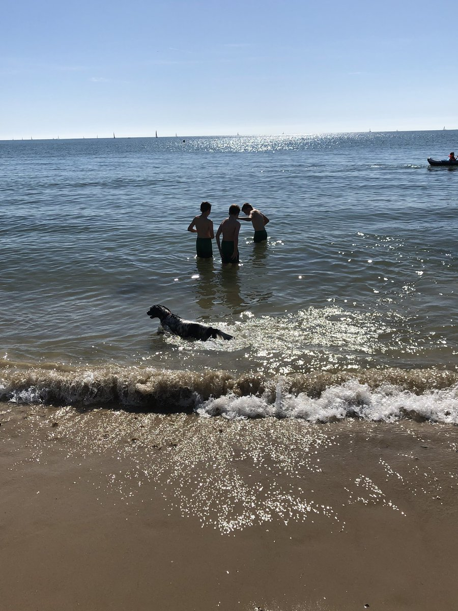 Maggie enjoying a swim in Mudeford with Will after a win at footy !! Not long now till@the cute Reeny and Dylan come to stay  <br>http://pic.twitter.com/uTyeG9TZqT
