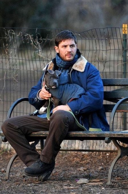 Happy birthday to my favorite tom h, mr tom hardy, love him and that little dog