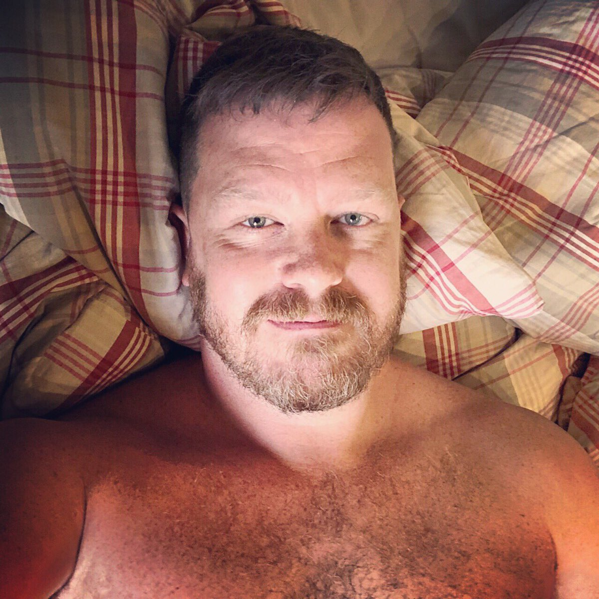 Bears Gays Videos thebeardedhomo hashtag on twitter