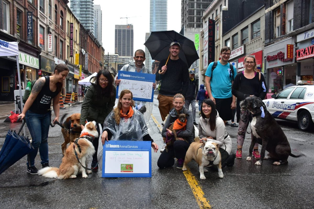 Thanks to everyone who came out for our #dogwalk today at @openstreetsto! It was a wet one, but our dog friends didn't care. It was great to spoil them with our bandanas, leashes, dog poop dispensers and teddy bears. Tag us in your photos! Until next year, everyone! #cityofto<br>http://pic.twitter.com/sZCKrsVeaY