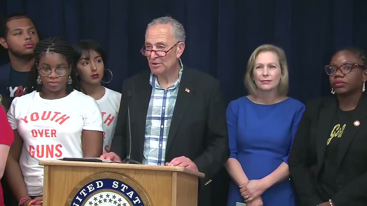 """Sen. Chuck Schumer: """"Speaker Pelosi and I got on the phone with President Trump. And we said for the sake of this country -- it's the 200th day since the House passed H.R. 8, a universal background check bill -- please tell McConnell to put it on the floor."""""""