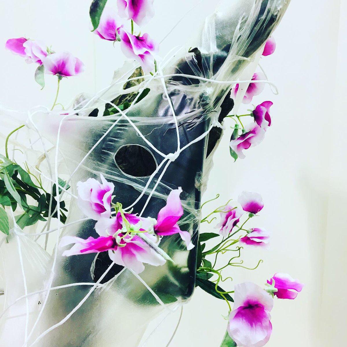 test Twitter Media - Subtiel 🌱 Iedere zes weken een botanische ervaring #bloomsuitleen Kan ook bij jouw thuis of op het werk. Info? https://t.co/3UzA3JjzYp  Of bel 06-29082882  #bloomsstore  #hortibotanicaldesigner #interieur #object  #uitleen https://t.co/npd5TlXlUX