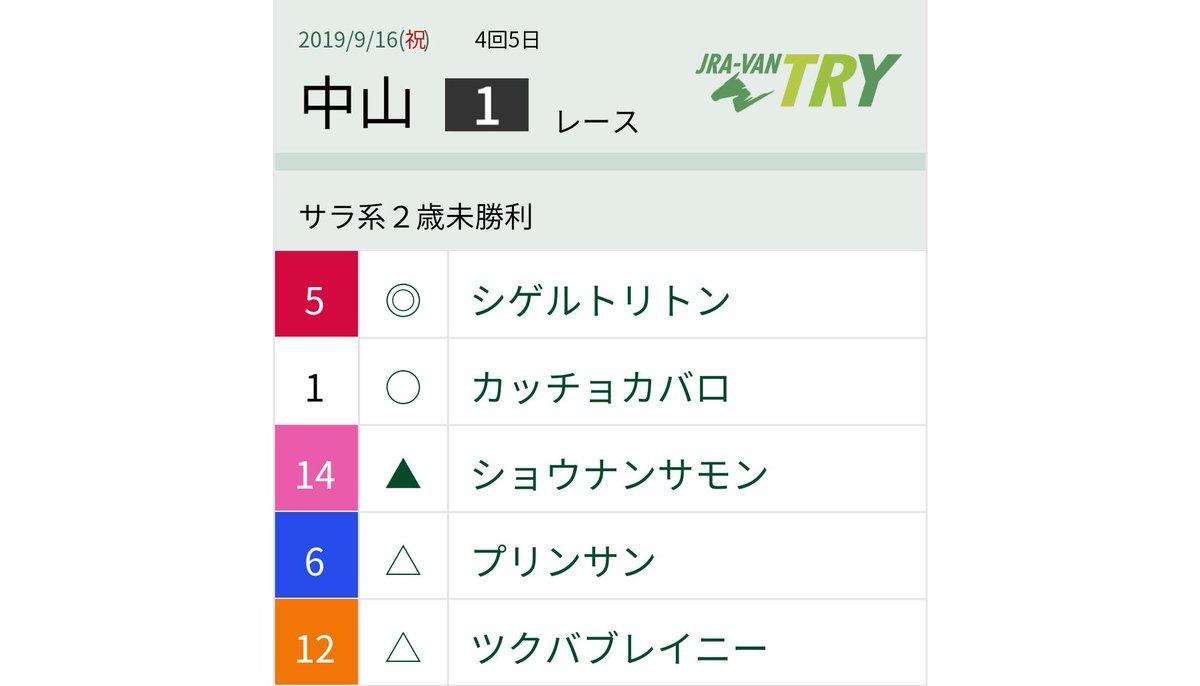 中山1R ❤️シゲルトリトン柴田善臣 相談役ファンにとっての実質メインレース。馬連流しで勝負しました!
