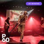 Op donderdag 16 januari keert Mothership terug naar P60 voor een eerbetoon aan Led Zeppelin! Alle hits van Whole Lotta Love tot aan Kashmir komen voorbij!⠀ ⠀ De kaartverkoop is direct van start gegaan!⠀  >> Tickets: https://t.co/rd0eG1yYvh