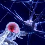 Image for the Tweet beginning: Mithilfe eines neuen neuronalen Netzwerks