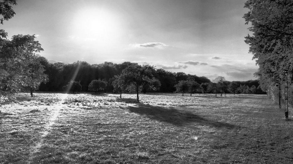 Ray of light.... #passionpassport #openmyworld #goplayoutside #welltravelled #theoutbound #travelphotography #bnw #naturephotography #naturelovers #naturelover #naturegram #natureporn #natureshots #naturephotographer #amazing