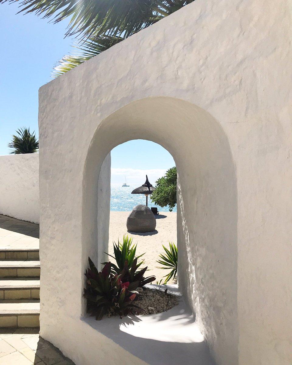 I spy another beautiful day in Mauritius  ☀️🏝💗#blueskies #sunshine #palmtrees #beachlife #islandlife #travel #travelphotography #explore #adventure #livetotravel #lovetotravel #mauritius #shangrilamauritius #relax #chill #randr #happyplace @ShangriLaMaur