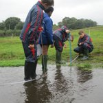 Our Year 8 boys had great fun at the River Tillingbourne last week completing their #geography project - boys + water = fun & #outdoorlearning #boysattheirbest #NewBeaconLife @GoodSchoolsUK @bbceducation