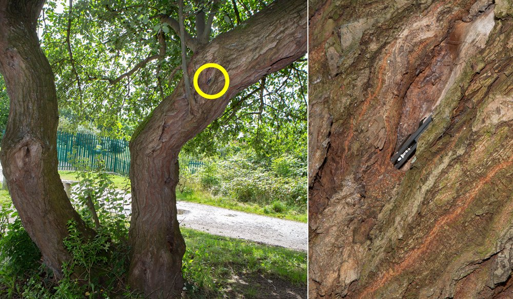 Did you spot the hidden knife? Do you know someone who says they carry a knife for self-protection? They are breaking the law and are also far more likely to be seriously injured or killed themselves. #hiddenknife #OpSceptre