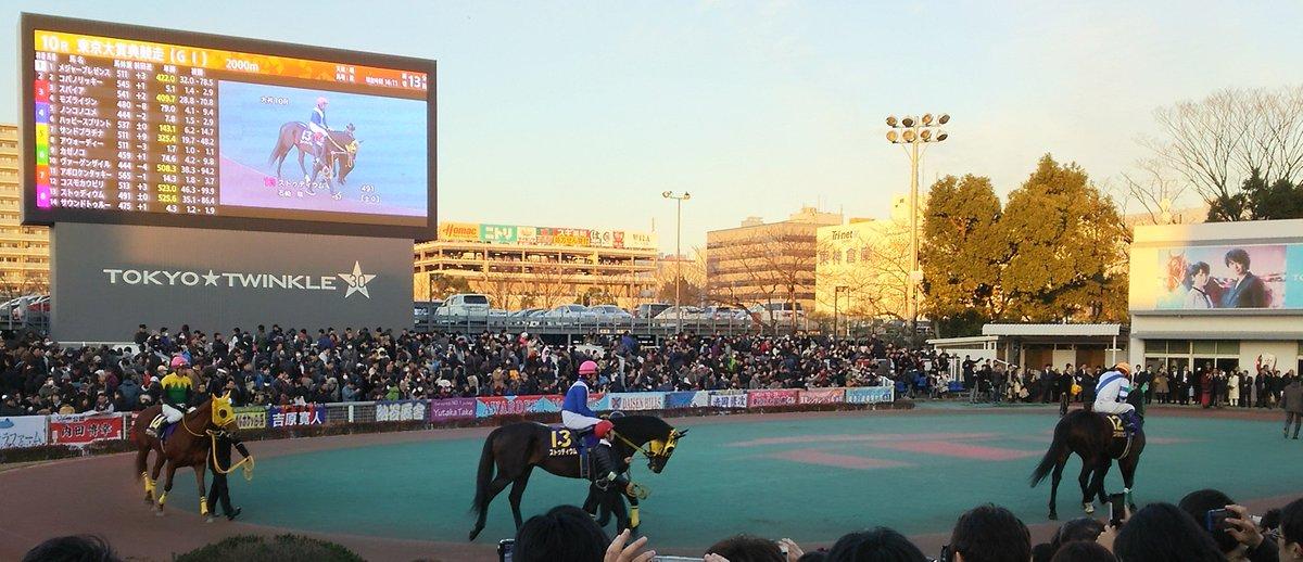 今日はストゥディウムが種牡馬入りしているといううれしい話を知ることができたので、当時の写真を探してみました。2016年12月29日東京大賞典、13番で出走時のストゥディウム。結果は11着だったんですが、ルースリンドの子が南関クラシック路線で活躍し、東京大賞典に出走するとかうれしかったですね。