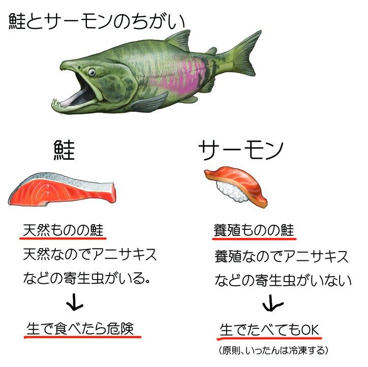 今日、テレビ観ていて、へぇ~知らなかったという豆知識。「鮭」と「サーモン」のちがいについて。鮭を英語でサーモンと言い換えただけでしょっと思ってて、でもなんで、寿司ネタが鮭と言わずサーモンやねんという謎が解けました。