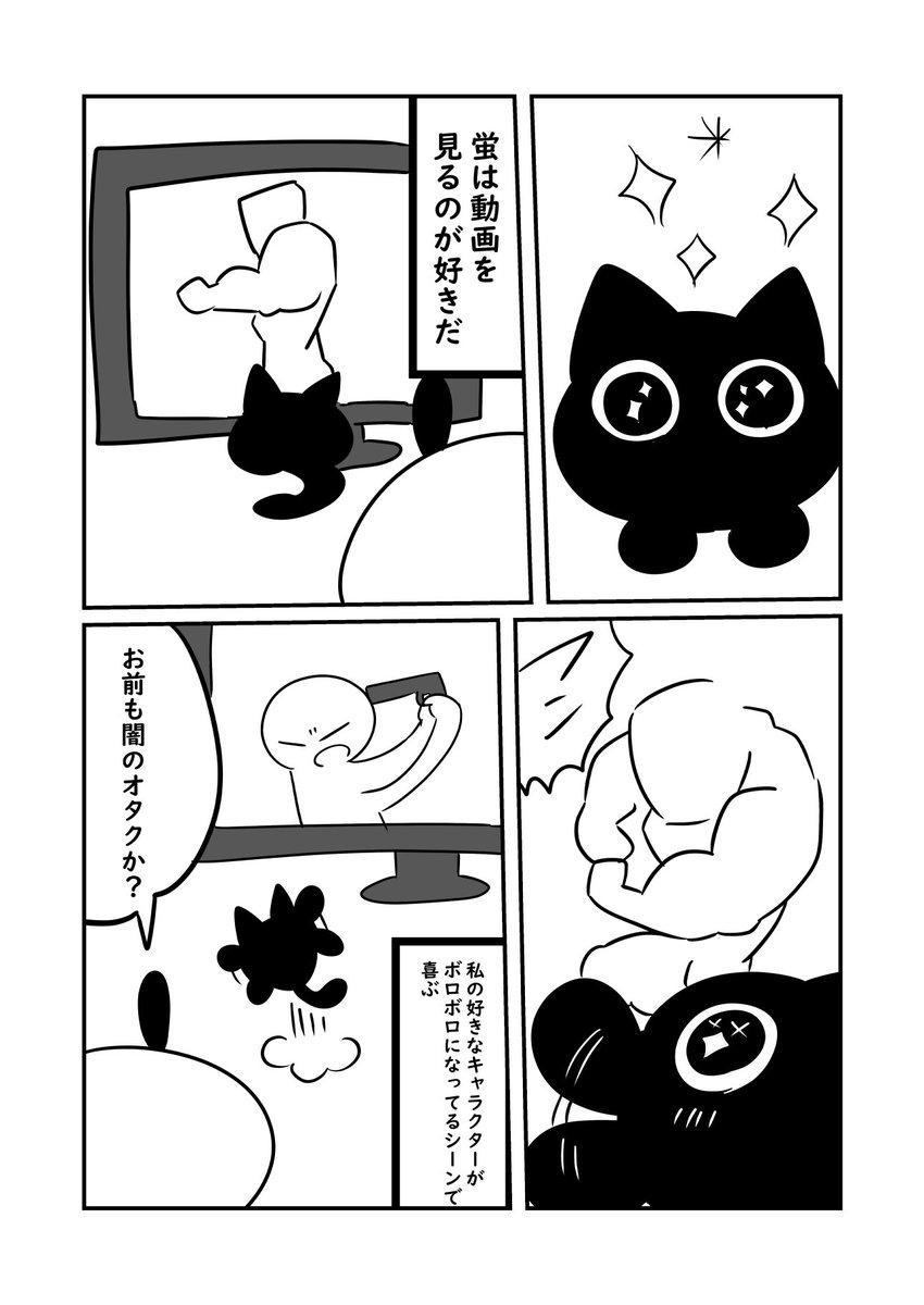 現代っ子蛍君は電子機器が好き  #ぬら次郎日記