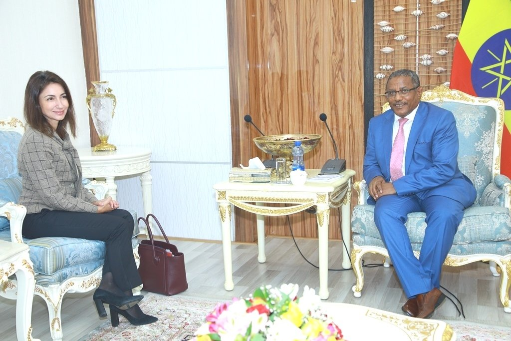 """MFA Ethiopia🇪🇹 on Twitter: """"Foreign Minister Gedu Andargachew held talks with Turkish Amb. Yaprak Alp on enhancing Turkish inv't to #Ethiopia. Turkey has recently designated Ethiopia as one of the ten target"""
