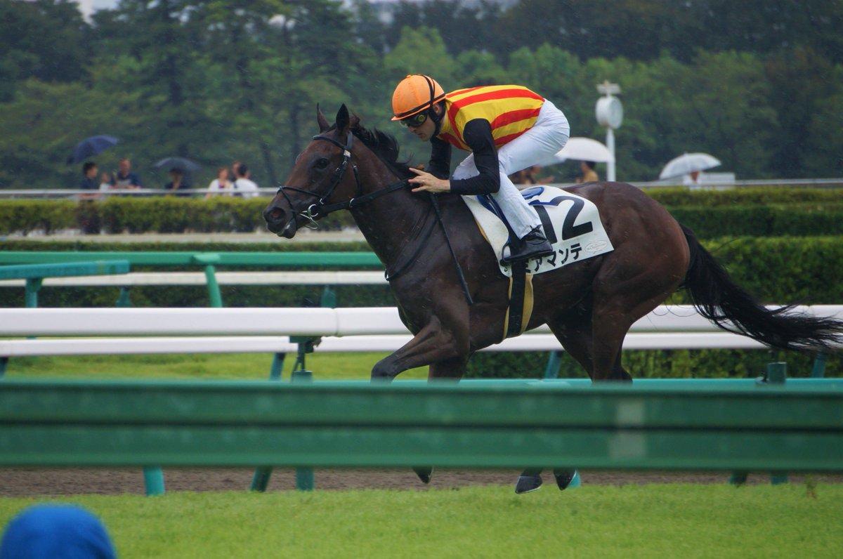 2019/09/16 中山 5R 2歳新馬 ⑫ミアマンテ:C.ルメール騎手 ⑨タマノシュシュ:田辺裕信騎手 ⑮フルールエトワール:三浦皇成騎手