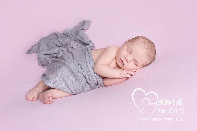 Die wunderhübsche kleine MARIS  hat mich mit Ihren Eltern zum #neugeborenenshooting besucht   https://ift.tt/2OWeQGp #newborn #babyshooting #babyfotos #hamburg #18days #uhlenhorst #winterhude #papenhuderstrasse #harvestehude #minimonday #schwangerinhamburg #babyshooting… pic.twitter.com/6Roenq2wlR  by Mama Moments