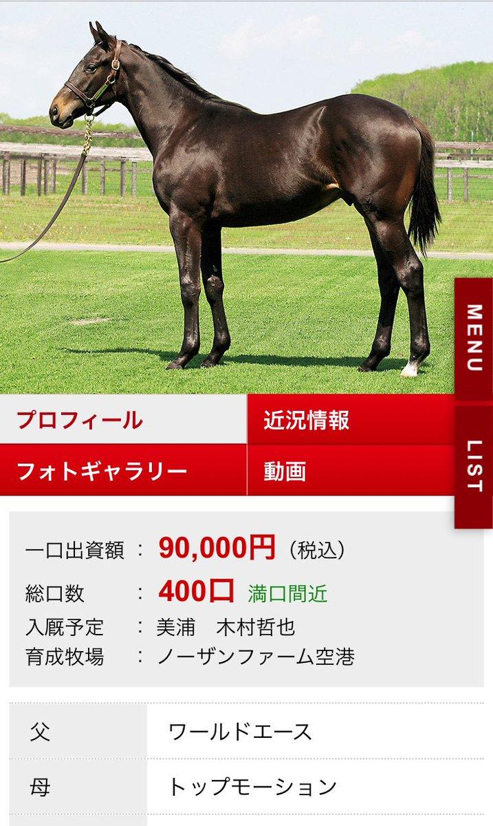 東サラ、予約出資完了!あとは、出資申し込み書が着てから返信すれば入会完了!出資した馬はトップモーションの18です!木村厩舎、早期デビューが出来そうで即戦力として期待です!