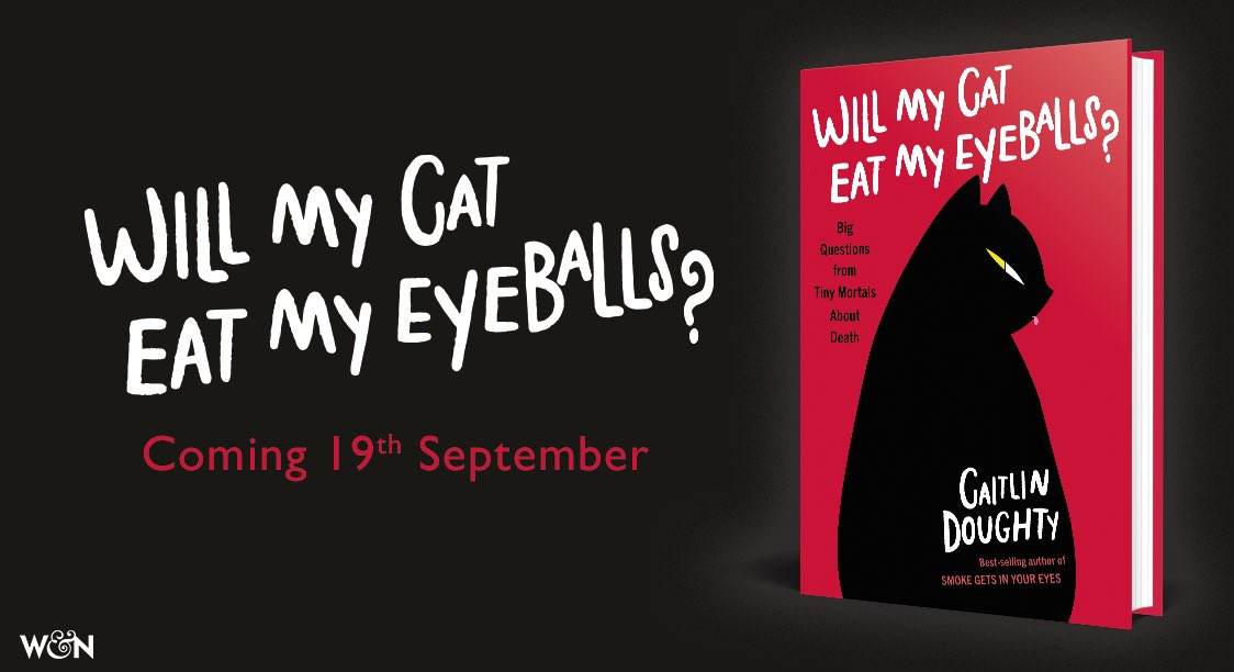 UK, Australia and New Zealand! My new book will be available everywhere books are sold or borrowed or listened to! (Yes, I did the audiobook!) on 19th SEPTEMBER 👁🐈 https:///smarturl.it/WillMyCat