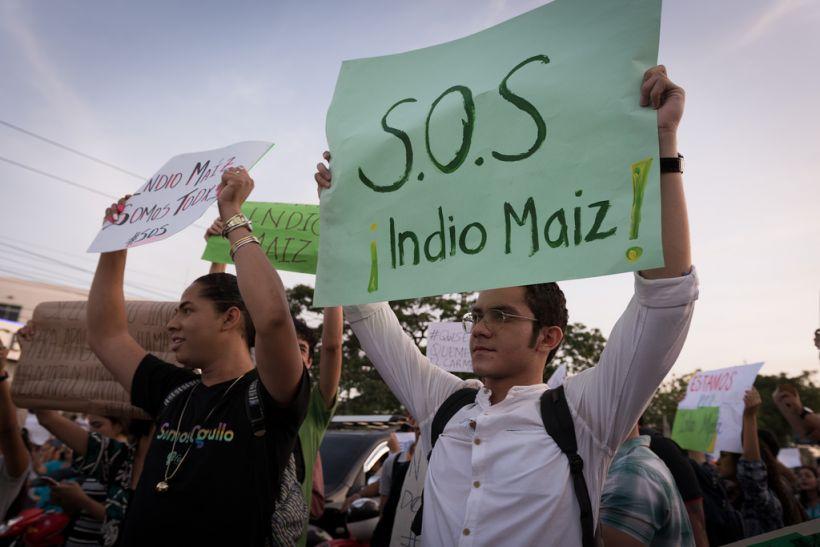 El modelo #SOSChiquitania utilizado en Bolivia, fue antes preparado en Nicaragua con el #SOSIndioMaiz. bit.ly/32CMAie