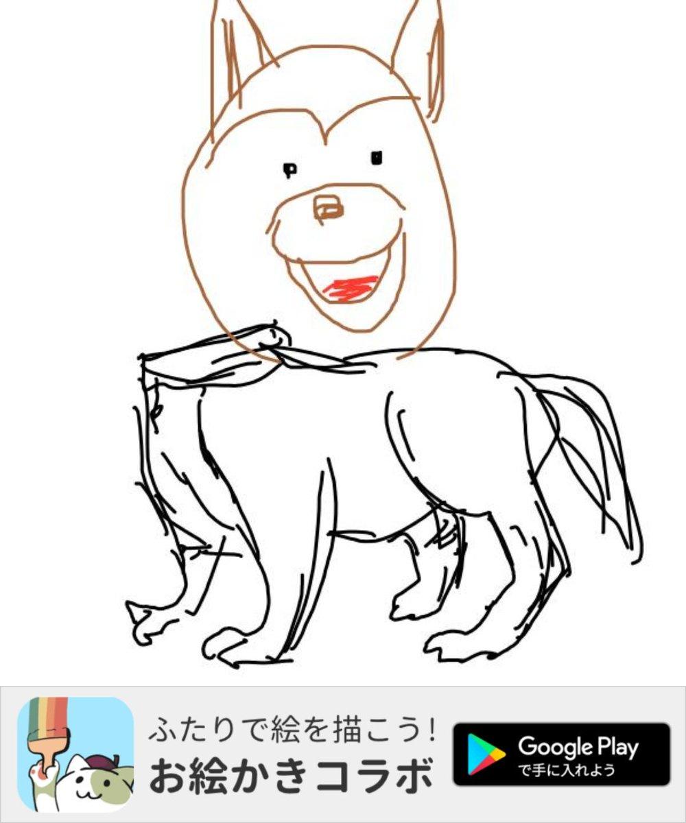 アプリで「柴犬」の絵を描いたよ! #お絵かきコラボ #私は体担当