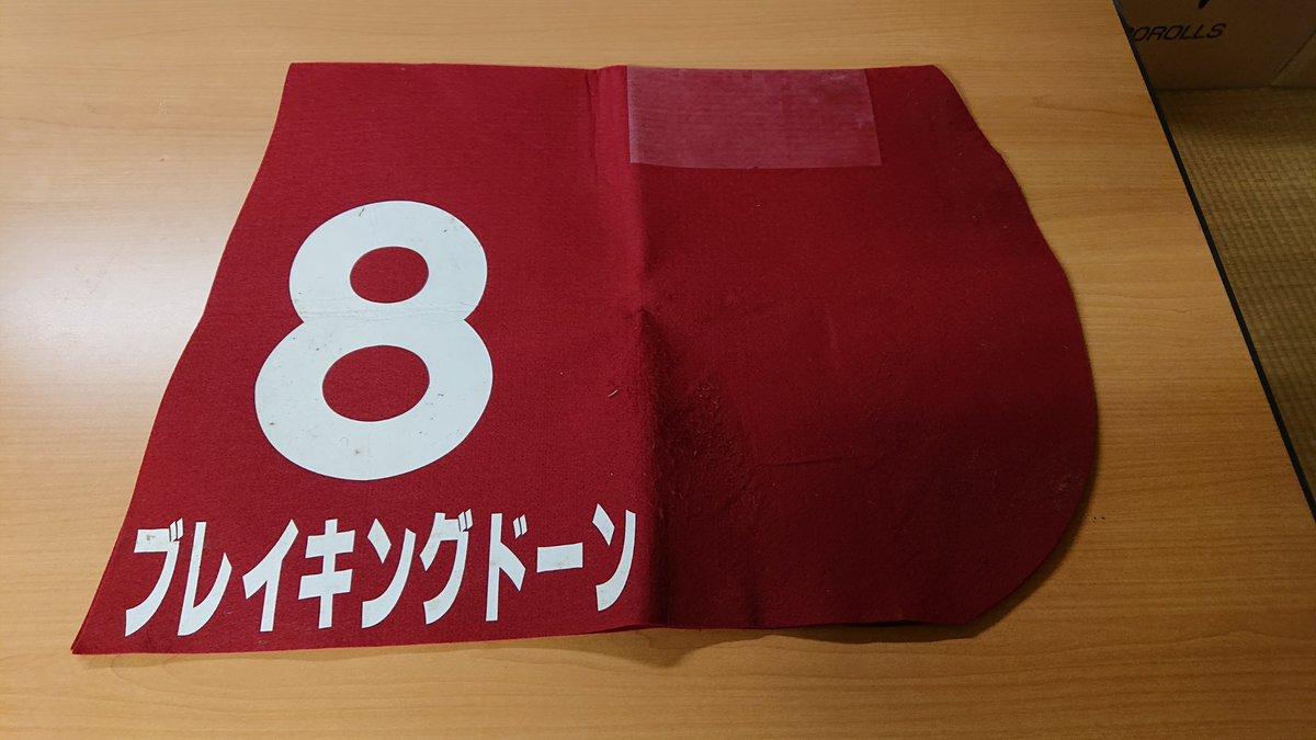 9月15日に中山競馬場に行った際、実使用ゼッケンが売っていたので買ったらブレイキングドーンのゼッケンだった。