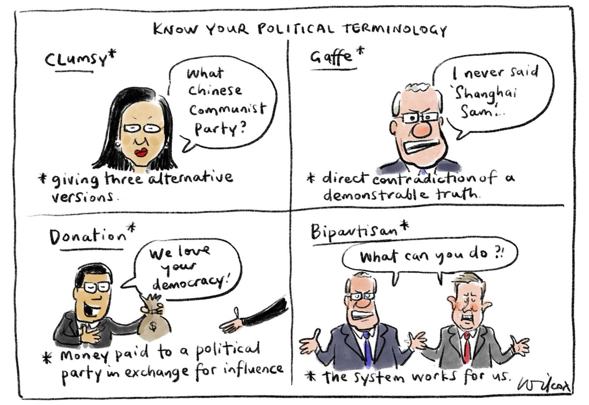 Political terminology. My @smh @theage cartoon.