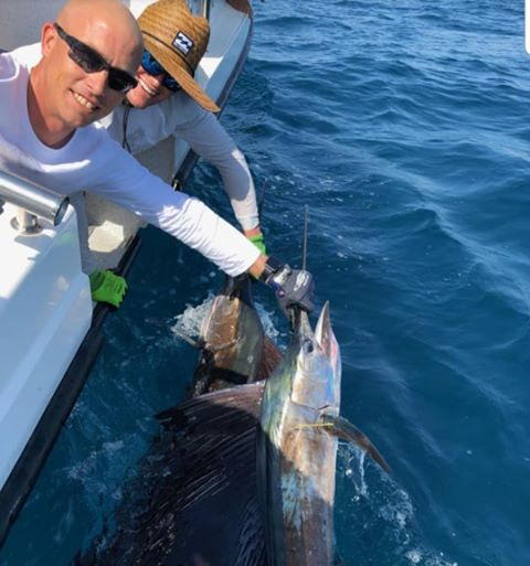 Darwin, Aus - Game Changers released 11 Sailfish and a Black Marlin over 2-Days.