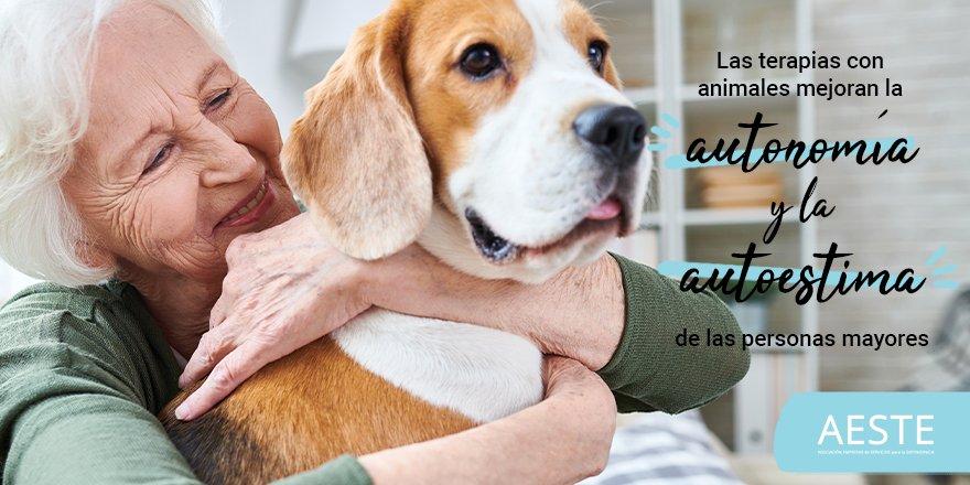 test Twitter Media - 🐶Las terapias con animales facilitan el bienestar emocional, la reducción del estrés y de los estados de ansiedad en las personas mayoresmientras se potencian las relaciones sociales, la autonomía y autoestima 💪  https://t.co/PDsfVDALfu #PersonasMayores https://t.co/W2gAhZr3oY