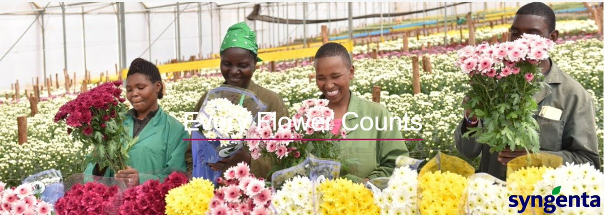 We are looking forward to welcoming you at NAIVASHA #HORTICULTURALFAIR2019 to present you our novelties and highlights on our stand! See you in Naivasha on 20th - 21st of September 2019!#HorticulturalExpo #EveryFlowerCounts