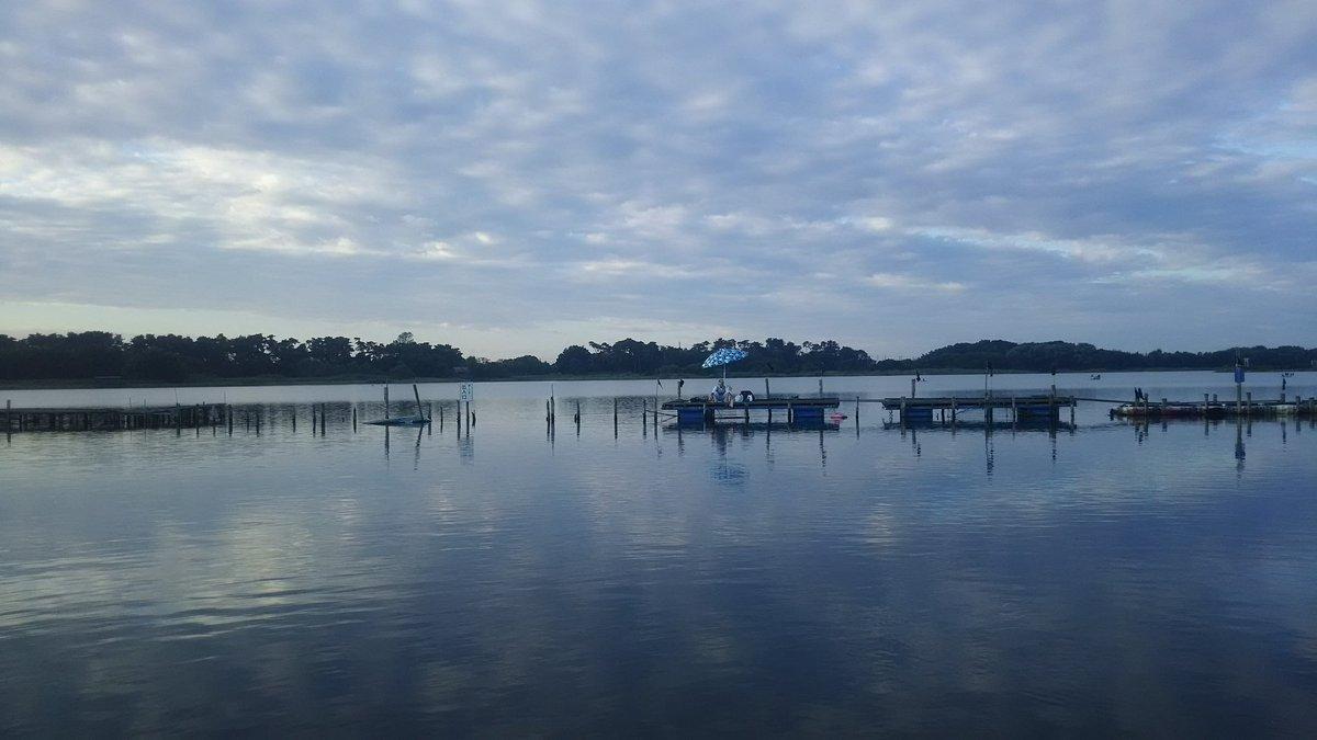 久しぶりの多々良沼です!暑い!朝イチは水温24℃台お昼は27℃リトルコンポジスカートで40くらいの釣れました!ありがたいことにすごい元気な魚で未計測でリリースしました。#多々良沼