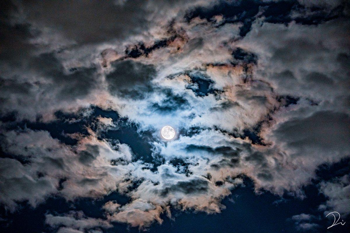 朧月夜。十五夜と十六夜は撮れなかったけれど、十七夜の月は雲がかかって綺麗な朧月が見れた。