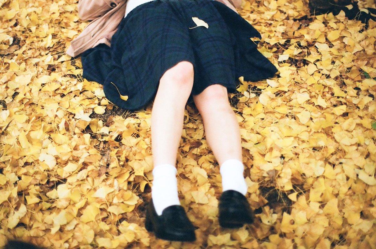 秋の色も好きになりたいな。