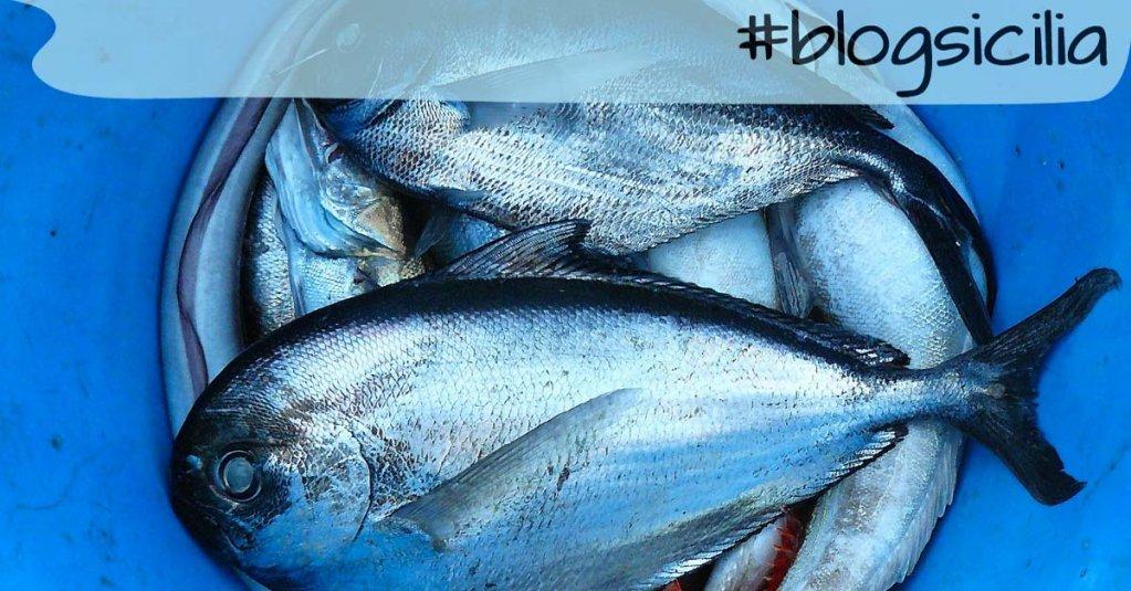 """#blogsicilia """"Dai un pesce a un uomo e lo nutrirai per un giorno. Insegnagli a pescare e lo nutrirai per tutta la vita"""""""