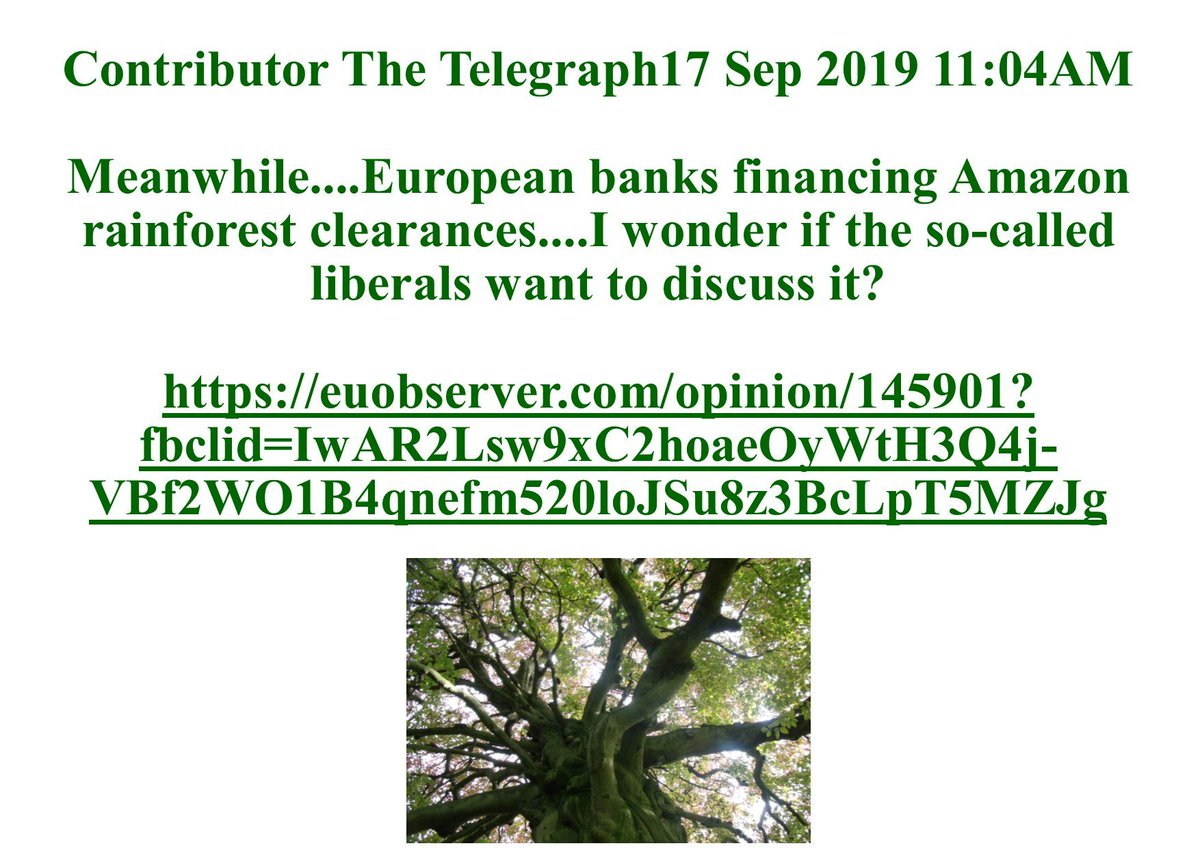#Meanwhile....European banks financing Amazon rainforest clearances <br>http://pic.twitter.com/8WYmgFA6oc