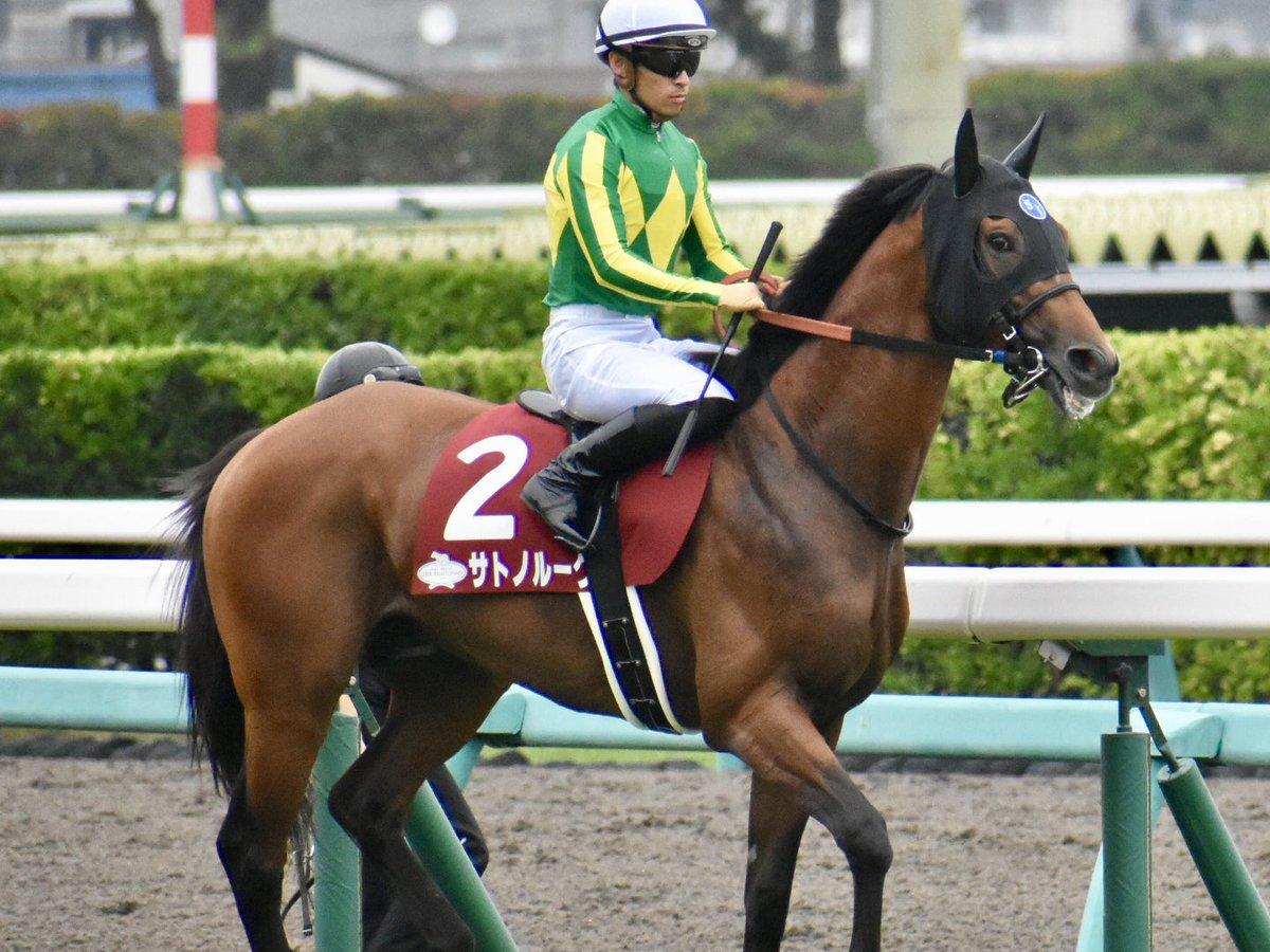 セントライト記念 2着2サトノルークス 川田将雅騎手