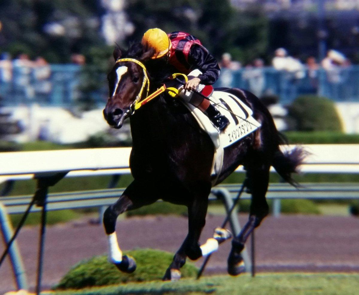 プレイバック 平成 エイシンスタンリー 父 Silver Hawk の外国産馬🐎 後続を4馬身離して逃げ切り圧勝 2戦目で新馬戦を勝ち上がった。 (昔は同じ開催なら続けて新馬戦に出走可能だった) この頃はグラスワンダーの活躍もありたくさんいたSilver Hawk産駒 #阪神競馬