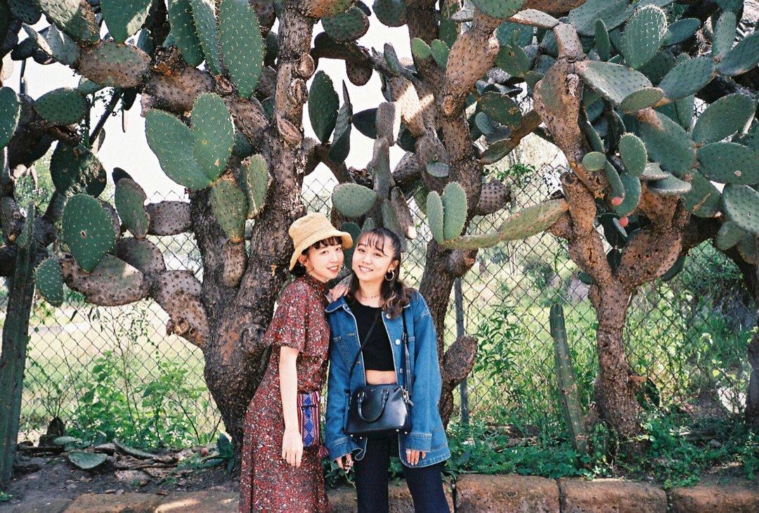 【メンバー Blog】 メキシコの思い出!!! 室田瑞希:…  #ANGERME #アンジュルム