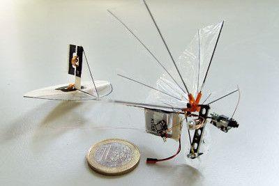 edurobotic photo