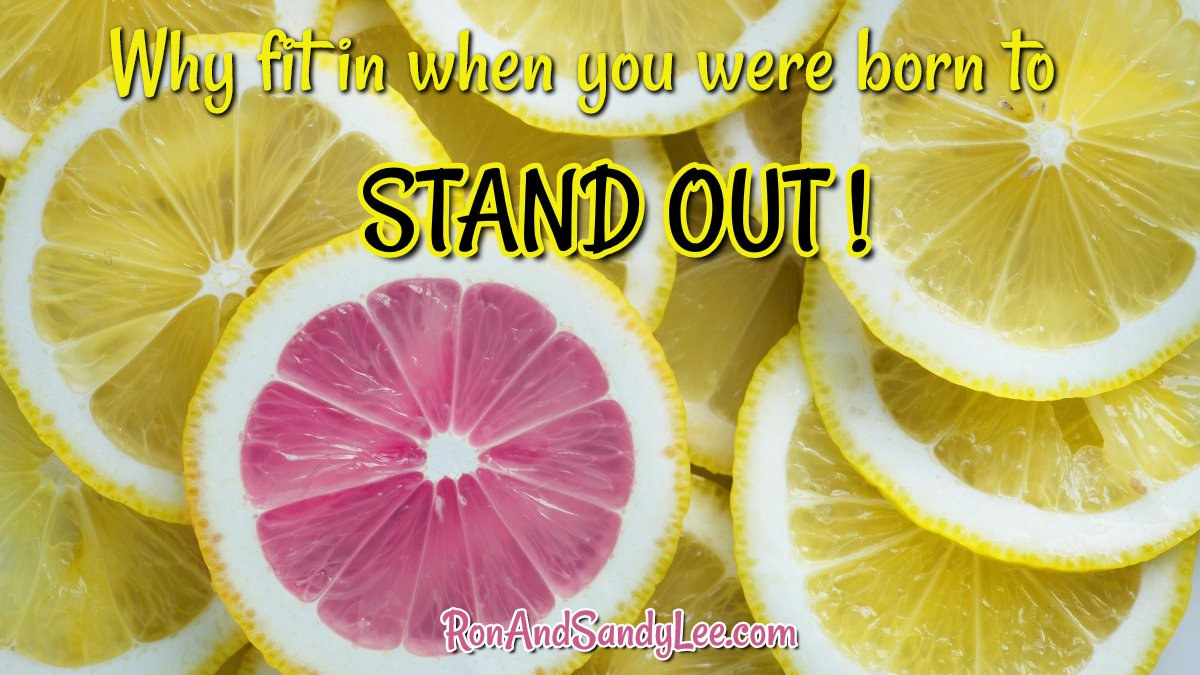 """""""Why fit in when you were born to STAND OUT!"""" Awesome idea!  Be yourself!    #freedomlifestyle #beawsome #growthhacking<br>http://pic.twitter.com/Jj3s9B0HhX"""