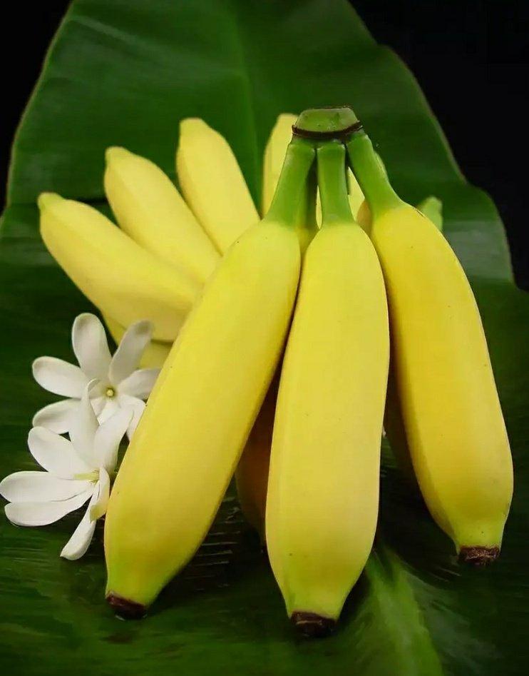 Бананы картинки фото