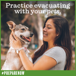 September is National Preparedness Month. Don't forget your pets! 🐕 Make sure to include your furry friends in your emergency evacuation plans. #PrepareNow