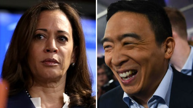 Poll: Andrew Yang ahead of Kamala Harris in her home state of California