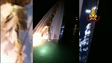 #Venezia Motoscafo si schianta contro la diga. I p...