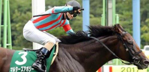 29日 GⅠスプリンターズステークス  特別登録馬に マルターズアポジーの名前が・・ 応援馬券買うわ~ww  鞍上予定がブッシーやないのが残念!  #マルターズアポジー #スプリンターズS